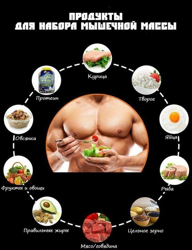 Счетчик калорий для набора мышечной массы
