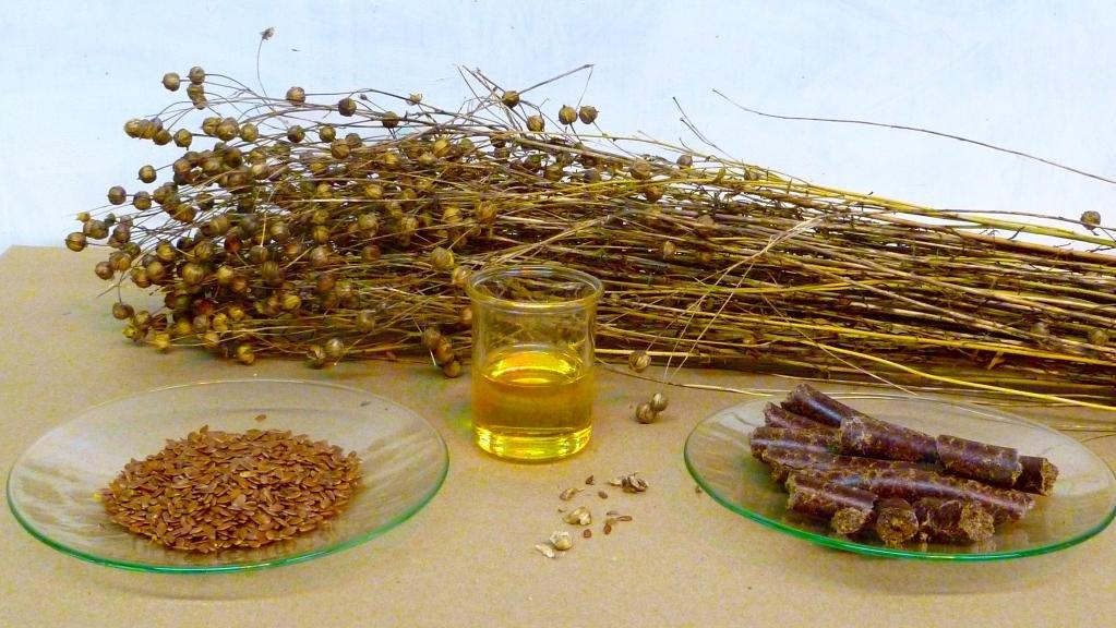 Помогает похудеть льняное масло