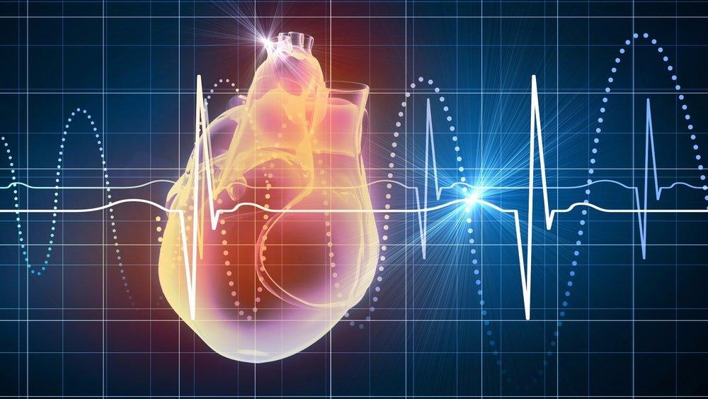 Частота сокращений сердца