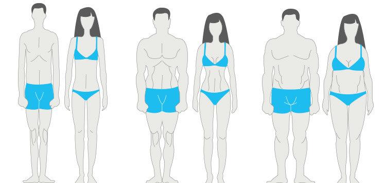 Три типа телосложения у мужчин и женщин