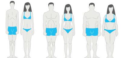 Как определить тип телосложения по запястью: способы и методы определения, показатели, особенности