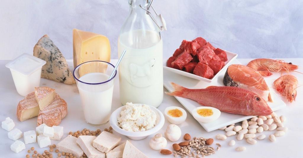 белковые продукты для жиросжигания