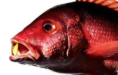 Рыбий жир в капсулах: состав, применение, польза и вред