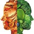 Сколько нужно калорий в день, чтобы похудеть: расчет калорий