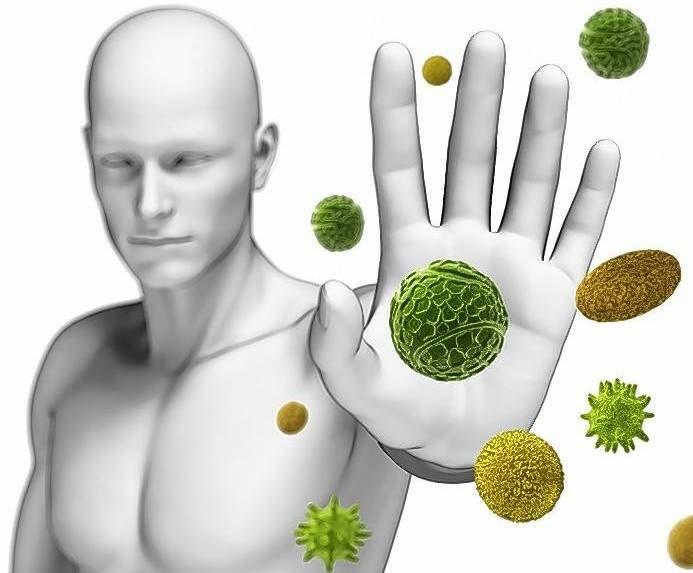 Как восстановить иммунитет взрослому