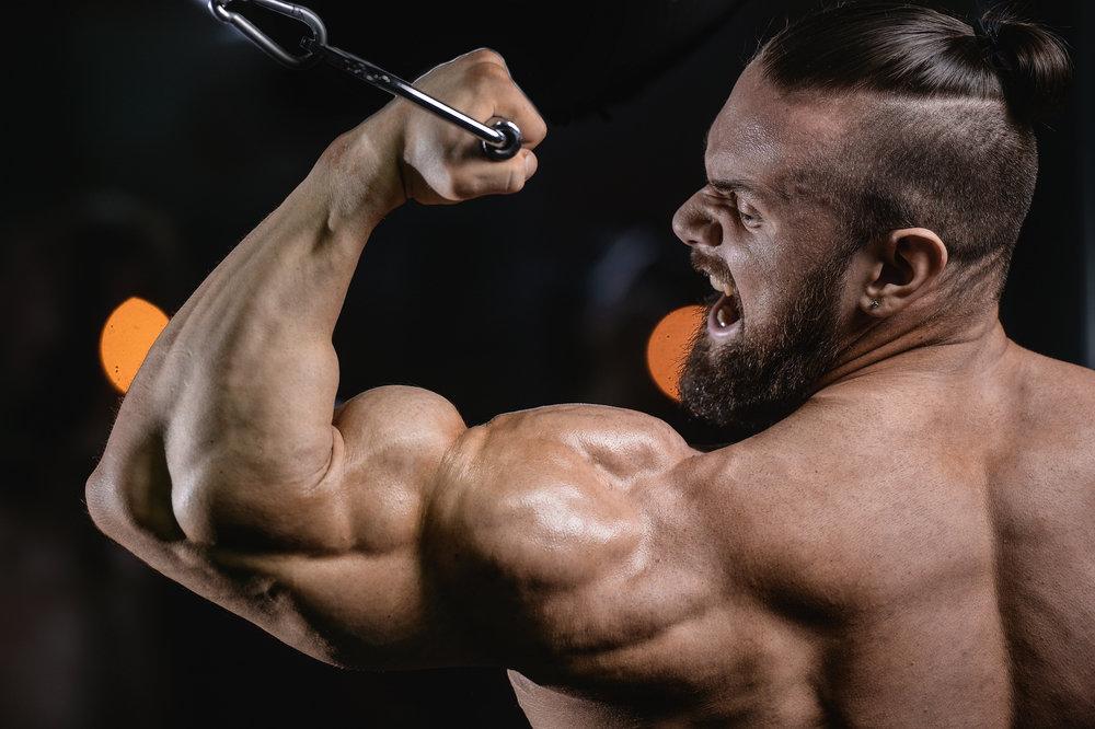 гормон тестостерон у мужчин как повысить