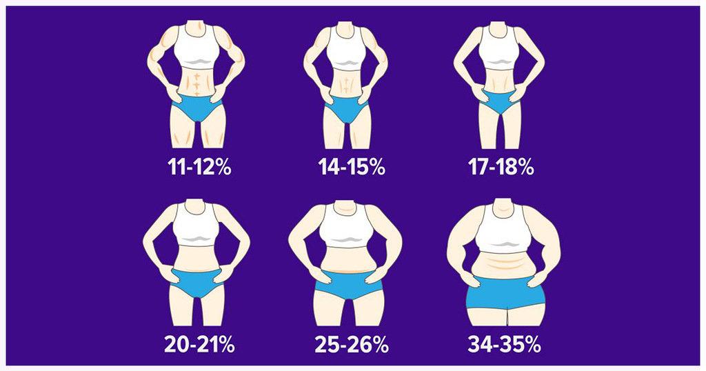процент жира