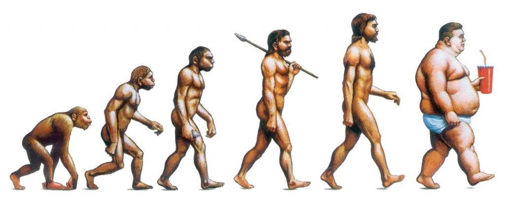 Эволюция жира