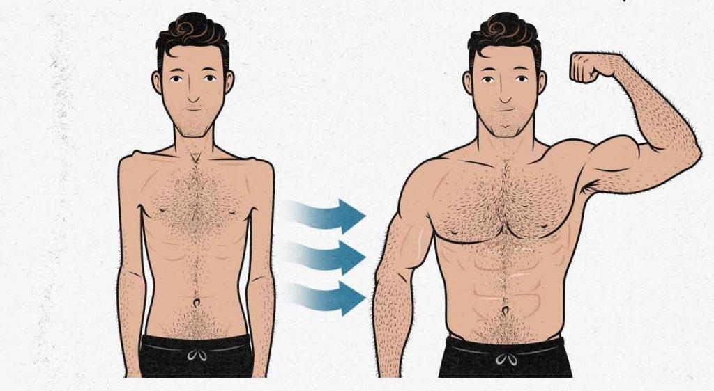 как набрать вес очень худому парню