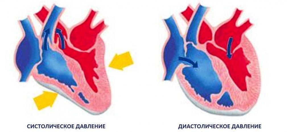 артериальное давление 135 80