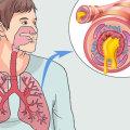 Чем отличается обструктивный бронхит от бронхита: разница в симптомах и лечении